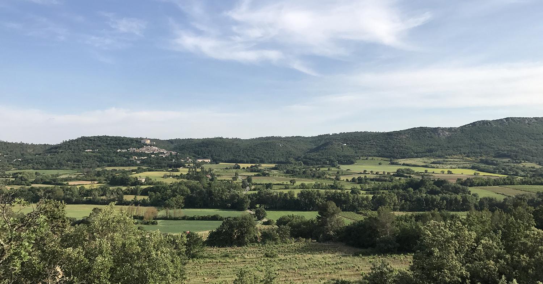 Producteur bio en Provence