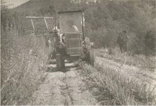 Les herbes de Provence sont à l'honneur par Patrice Truc producteur plantes aromatiques bio