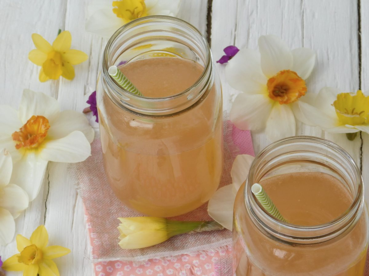 Recette limonade romarin pamplemousse pomme