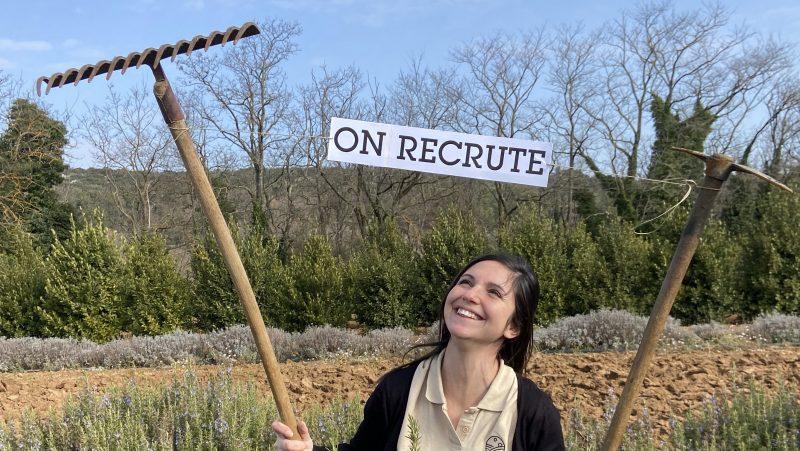 Emploi assistant entretien des plantations herbes de Provence bio Truc & Co